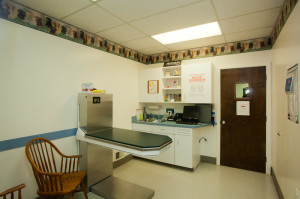Adamstown Veterinary Hospital Examination Room 4