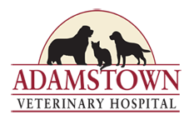Adamstown Veterinary Hospital