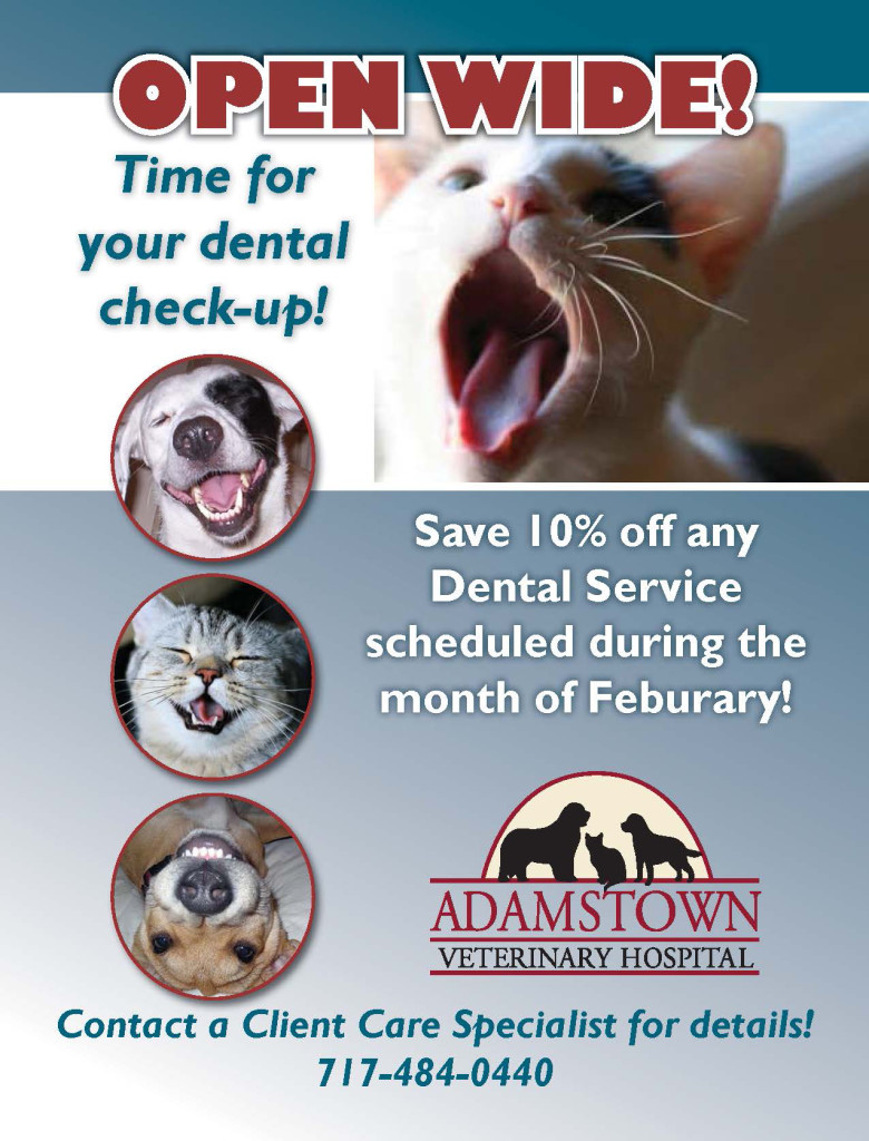 Will provides it is Pet Health Awareness Months